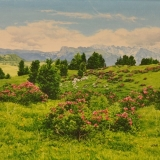 jean-pilch-Alpenrosen