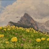 jean-pilch-Globeflowers