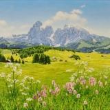 jean-pilch-Seiseralm, Dolomites