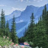 jean-pilch-Goat-lake-Trail