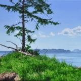 jean-pilch-Skedans Bay, Haida Gwaii