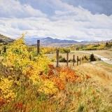 jean-pilch-Western Fenceline